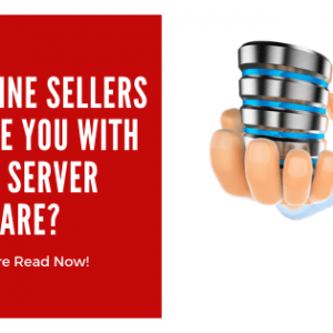 Do Online Sellers Provide You With better Server Hardware?