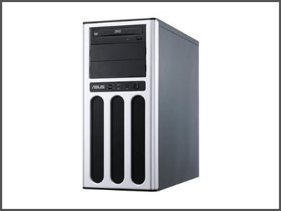 TS100-E8-PI4 Tower Server